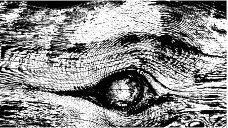 Desgastado por el tiempo textura de madera. Corte transversal de un árbol. Ilustración del vector.