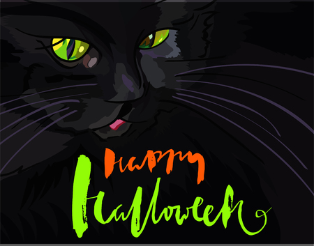 green eyes: Halloween black cat with green eyes. Halloween handwritten lettering. Vector illustration. Illustration