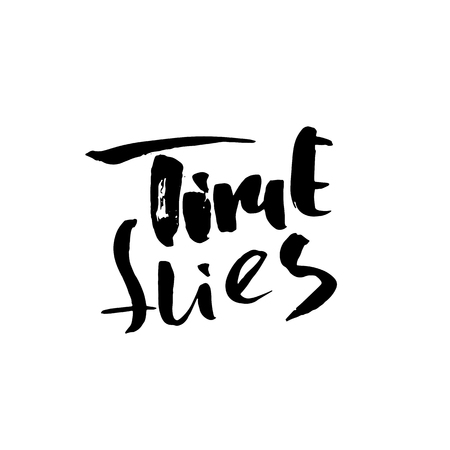 Time flies. Hand drawn dry brush motivational lettering. Ink illustration. Modern calligraphy phrase. Vector illustration Çizim
