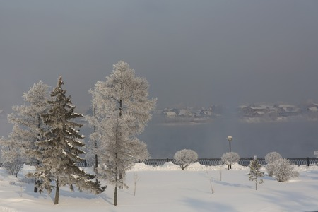 Winter forest with trees covered snow on river background. White frost park landscape. Stock Photo