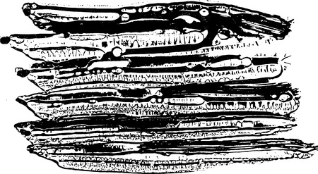 Ink vector sponge background. Vector illustration. Grunge hand drawn watercolor texture.