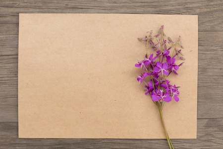 Blooming sally purple flowers with craft paper blank on old grunge wooden background. Top view. Minimalistic mockup. 写真素材