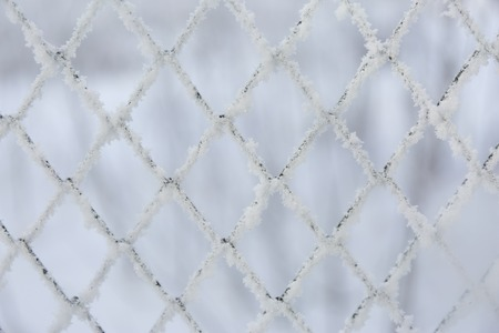 Frozen lattice fence. Snow covered grid. Winter hoarfrost. Standard-Bild - 110239892