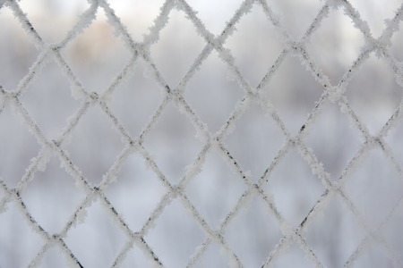 Frozen lattice fence. Snow covered grid. Winter hoarfrost. Standard-Bild - 110742841