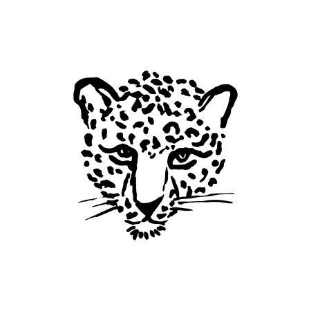Leopard grunge print. Vector illustration of wild cat head