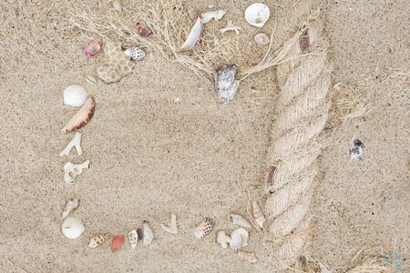 Seashells and corals frame on sand background.
