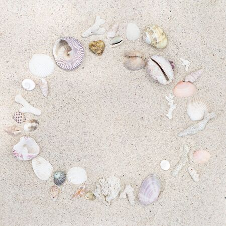 Seashells and corals round frame on sand background.