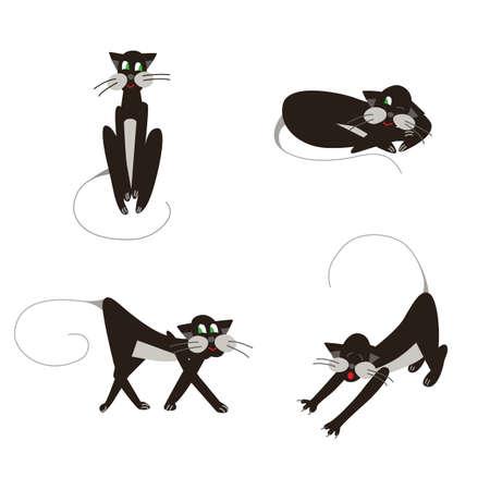 Black cats set walking, sleeping, sitting and streching
