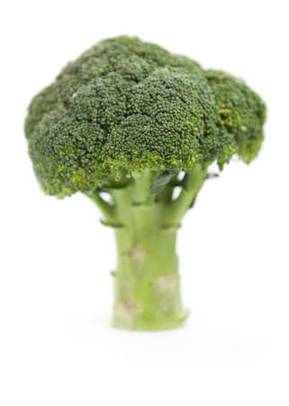 brocolli: a piece of brocolli, treeshaped with limited focus