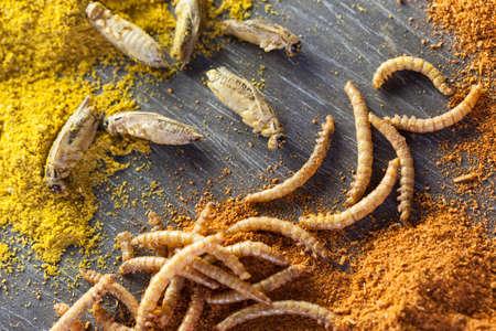 ローストとスパイスの食用のコオロギやミルワーム 写真素材