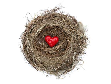 Red heart in birds nest over white background           Stock Photo