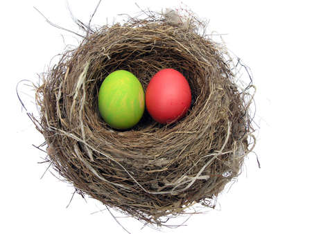 Painted Easter eggs in a birds nest.          Stock Photo