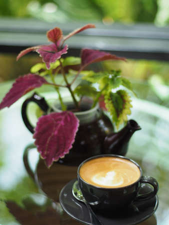 A black cup of coffee and a pot of red plant on the glass table