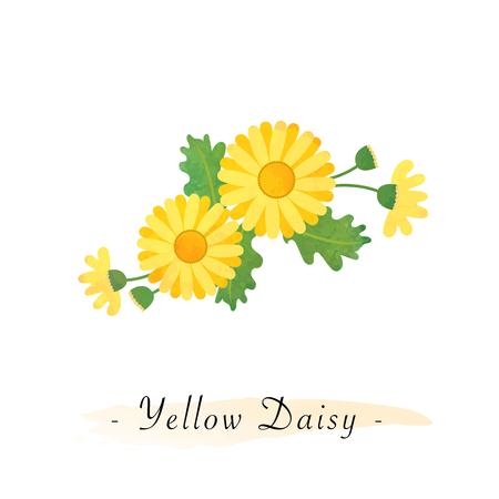 Colorful watercolor texture vector botanic garden flower asteraceae yellow daisy Иллюстрация
