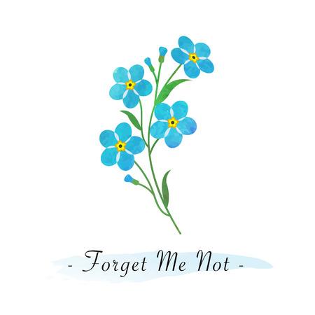 Die botanische Gartenblume des bunten Aquarellbeschaffenheitsvektors hellblau vergisst mich nicht Standard-Bild - 84224659