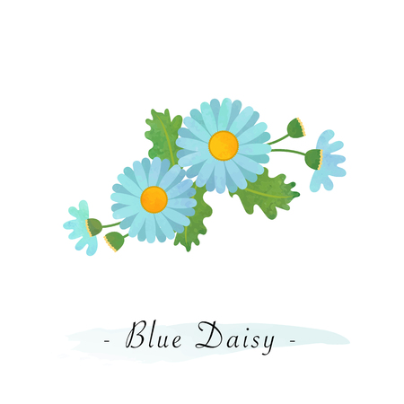 Colorful watercolor texture vector botanic garden flower asteraceae light blue daisy