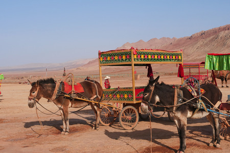 Nature landscape view of the Flaming Mountain and camel in Turpan Xinjiang Province China. Publikacyjne