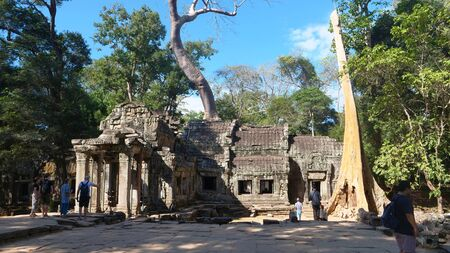 Landscape view of Ta Prohm Temple in Angkor wat complex, Siem Reap Cambodia. Publikacyjne