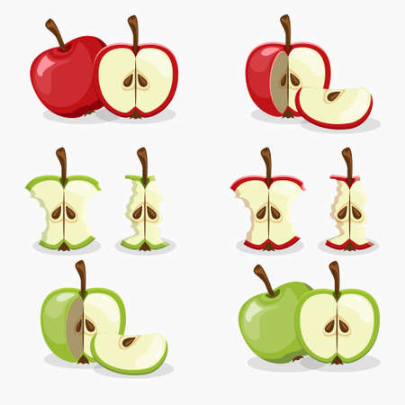 apple core: apples and apple cut fruit set vector Illustration