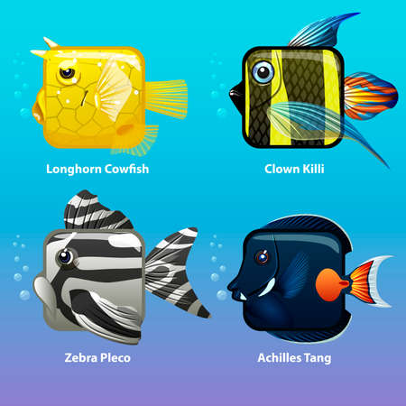 stylized fish are square in vector, Clown killi, Longhorn Cowfish, Zebra Pleco, Achiles Tang
