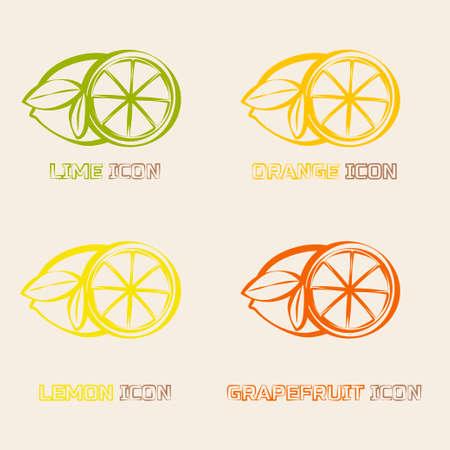 citrus fruits: Citrus fruits Icons. Orange, lemon, grapefruit and lime