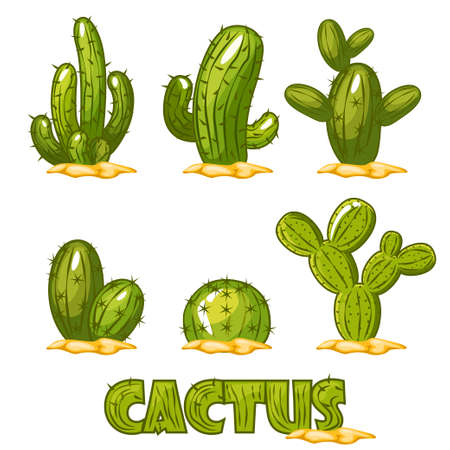 Mexican Cactus Set, funny set of comic mexican desert cactus plants in vector Illustration