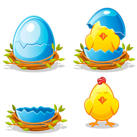 Cartoon funny chicken and blue egg in a nest of twigs in various stages of development, chick young boy