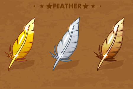 Gold, Silver and bronze Feather 写真素材