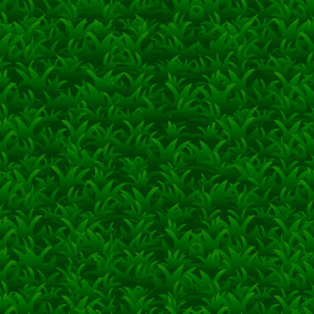 Green grass seamless pattern, vector background