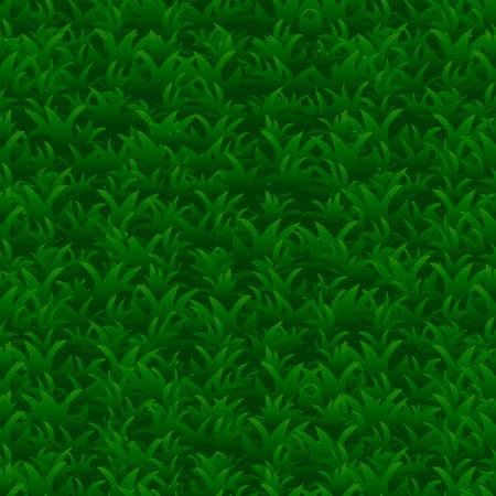 Green grass seamless pattern, vector background