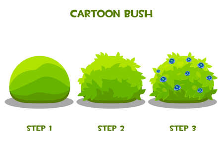 Vector drawing step by step of a flowering bush.