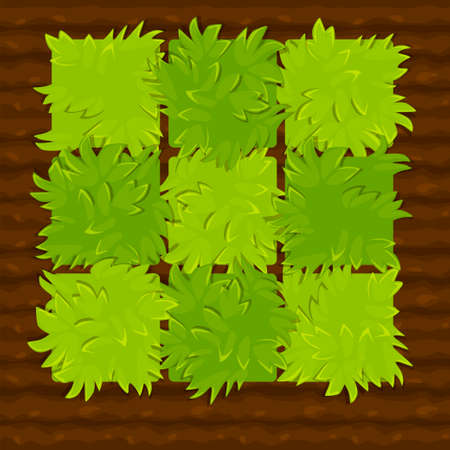 Vector illustration of a garden bed or vegetable garden for the game.