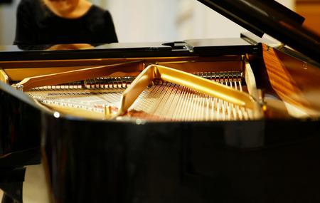 grand piano: piano
