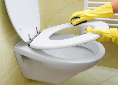 house worker: cleaning toilet Stock Photo