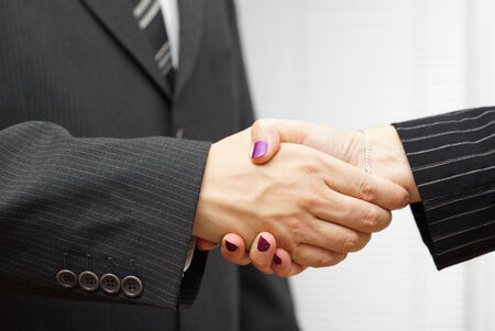 client meeting: businesswoman and businessman shakeing hands. Successful business concept