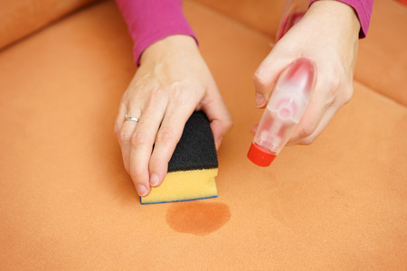 modern sofa: professional cleaner is cleaning stain on sofa with spray bottle and sponge Stock Photo