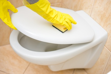 bathroom woman: Professional female cleaner is cleaning toilet in bathroom