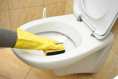 toilet sink: Professional female cleaner is cleaning toilet in bathroom