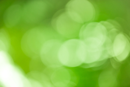 Green bokeh abstract background out of focus from nature forest