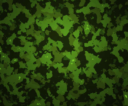 Green Camouflage Texture Army Background Stock Photo - 13546101