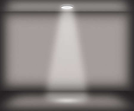 Gray Single Spotlight Room Background photo
