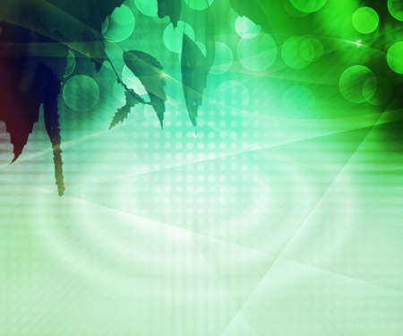 Green Natural Abstract Background photo