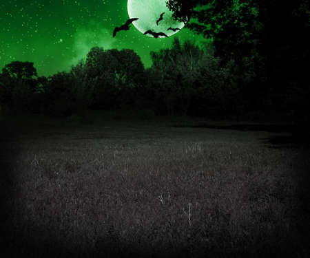 Scary Meadow at Night Halloween Green Background photo