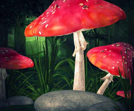 Mushrooms Premade Background Stock Photo - 21138384