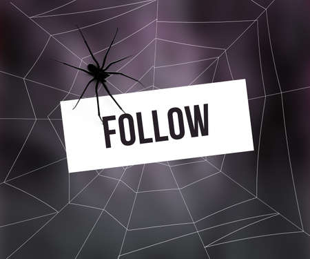 Follow in Spider Web photo