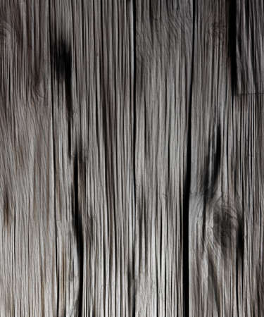 Gray Wooden Texture photo