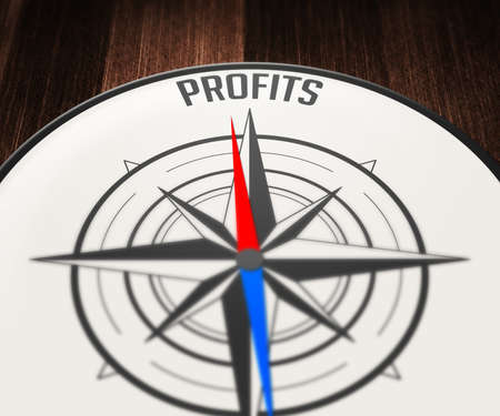 Profits Word Indicated by Compass photo