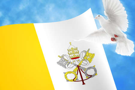vatican: Vatican Dove Background