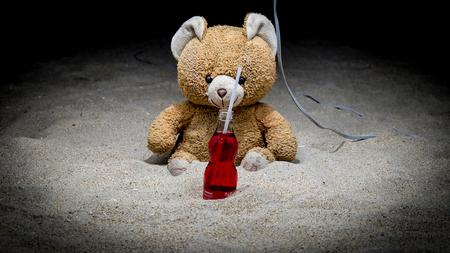 sacrificio: Oso de peluche con una botella delante de él lleno de líquido rojo. Parece que un sacrificio visto en el budismo la religión.