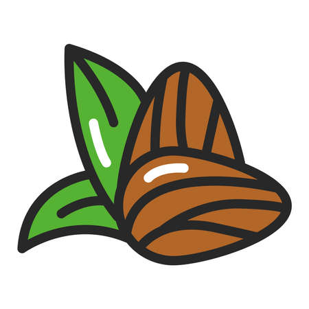 Almond color line icon. Healthy, organic food. Proper nutrition. Isolated vector element. Outline pictogram for web page, mobile app, promo. Çizim